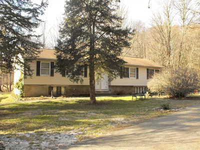 Amenia Multi Family Home For Sale: 61 Glen