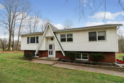 Dutchess County Single Family Home For Sale: 2163 Route 82