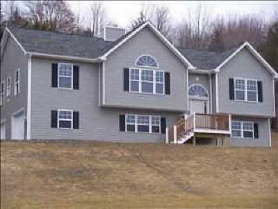 Pleasant Valley NY Single Family Home For Sale: $390,000