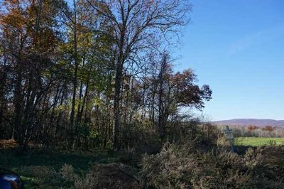 Poughkeepsie Twp Residential Lots & Land For Sale: 8189 Inwood Ave