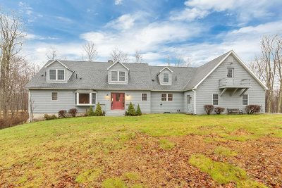 Dutchess County Single Family Home For Sale: 845 Cold Spring Rd