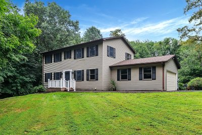 Dutchess County Single Family Home For Sale: 3 Jess Court