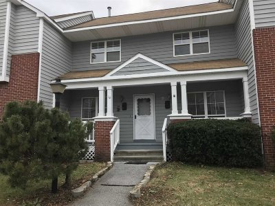 Poughkeepsie Twp Condo/Townhouse For Sale: 18 Taconic