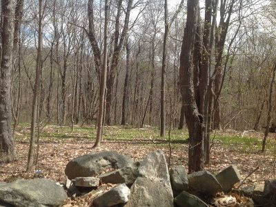 East Fishkill Residential Lots & Land For Sale: Stormville Mountain Rd