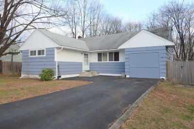 Dutchess County Single Family Home For Sale: 36 Phyllis Rd
