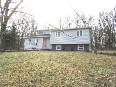 East Fishkill Single Family Home For Sale: 318 Stormville Mountain Rd