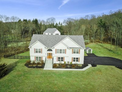 East Fishkill Single Family Home For Sale: 254 Creamery Rd