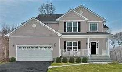 Fishkill Single Family Home For Sale: 15 Arcadian Place
