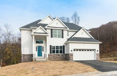 Fishkill Single Family Home For Sale: 45 Arcadian Place