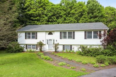 Amenia Single Family Home For Sale: 100 Cascade Rd