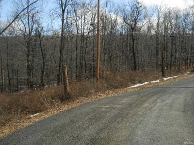 East Fishkill Residential Lots & Land For Sale: 152 W. Hook Road