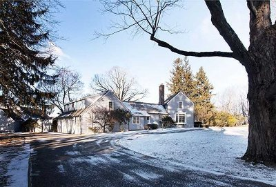 Copake Single Family Home For Sale: 591 Breezy Hill Road