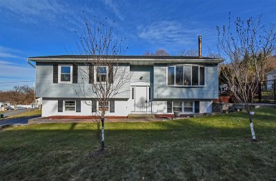 Fishkill Single Family Home For Sale: 32 Willow Rd
