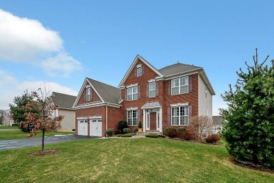 East Fishkill Single Family Home For Sale: 89 Fenton Way