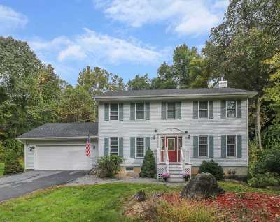 Dutchess County Single Family Home For Sale: 6 Pam Ln