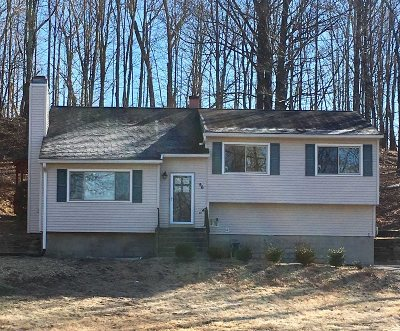 Wappinger Single Family Home For Sale: 56 Diddell