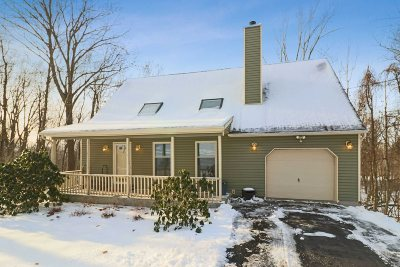 Dutchess County Single Family Home For Sale: 113 Brothers Rd