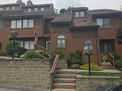 Poughkeepsie City Condo/Townhouse For Sale: 226 Panorama Ct