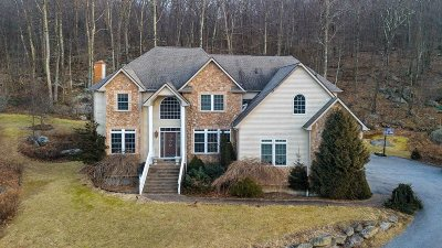 Dutchess County Single Family Home For Sale: 74 Emma Way