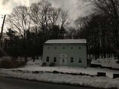 Saugerties Single Family Home For Sale: 255 High Falls Rd