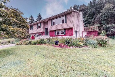 Dutchess County Single Family Home For Sale: 287 Walsh Rd
