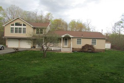 Fishkill Single Family Home For Sale: 459 Stormville Mountain Rd