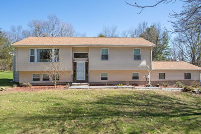 Dutchess County Single Family Home For Sale: 7 Chase Court