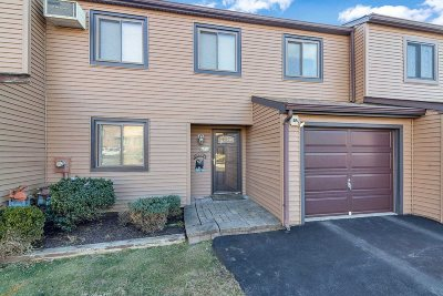 Dutchess County Condo/Townhouse For Sale: 27 Walnut Ct