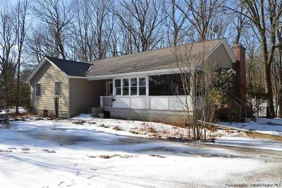 Columbia County Single Family Home For Sale: 58 58a Wenhardt Road