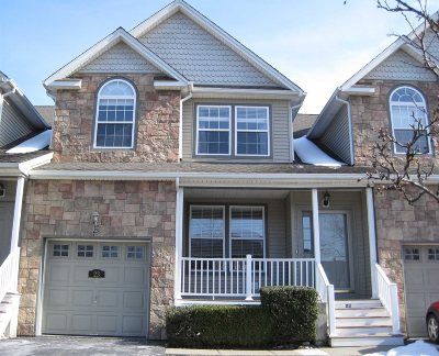 Dutchess County Condo/Townhouse For Sale: 23 N River Dr