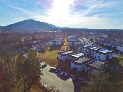 Dutchess County Condo/Townhouse For Sale: 13 Skyline Dr #10