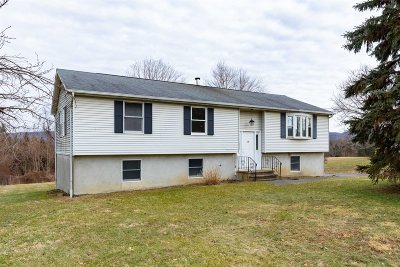East Fishkill Single Family Home For Sale: 73 Gold Rd