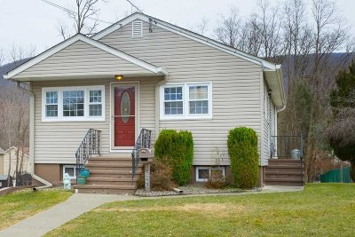 Dutchess County Single Family Home For Sale: 249 Liberty