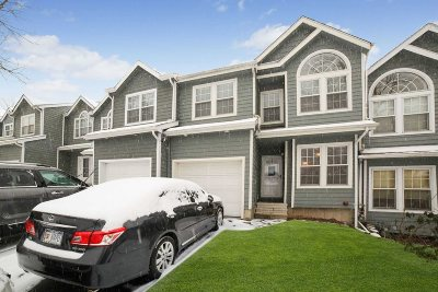 Dutchess County Condo/Townhouse For Sale: 119 Pinebrook Dr