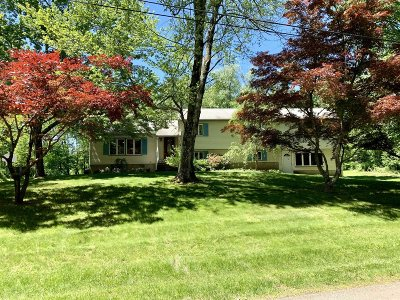 East Fishkill Single Family Home For Sale: 16 Orchard Lane