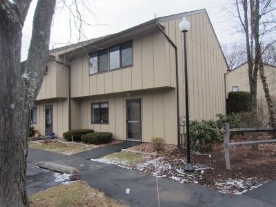 Poughkeepsie City Condo/Townhouse For Sale: 60 Hudson Heights Dr #60