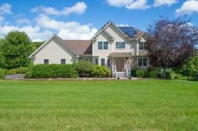 Dutchess County Single Family Home For Sale: 41 Ryans Run