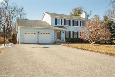 Dutchess County Single Family Home For Sale: 4 Sandi Ln