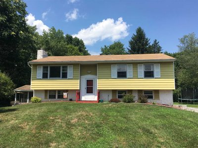 Dutchess County Single Family Home For Sale: 169 Cardinal Rd