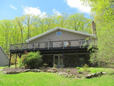 Dutchess County Rental For Rent: 217 Mountain Road