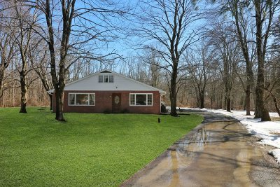 East Fishkill Single Family Home For Sale: Cosmo Drive