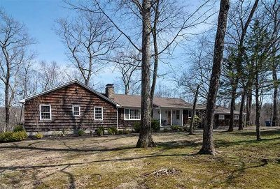 Rhinebeck Single Family Home For Sale: 399 Mill Road