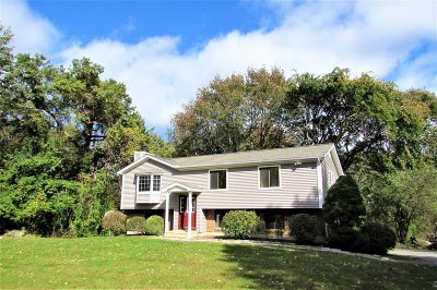 Pawling Single Family Home For Sale: 96 Mountain View