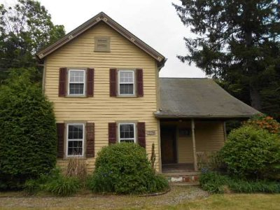 Dutchess County Single Family Home For Sale: 5398 Route 82