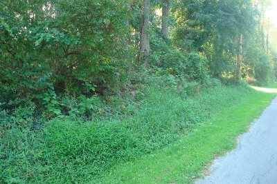 Pleasant Valley Residential Lots & Land For Sale: Marshall