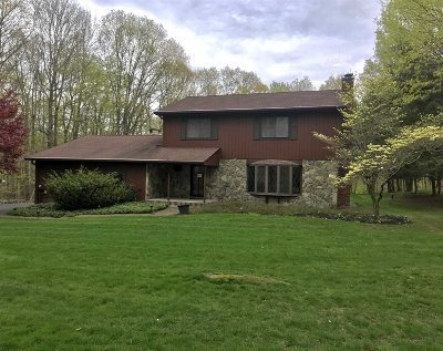 Dutchess County Single Family Home For Sale: 8 Halter