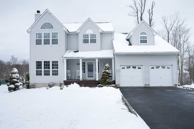 Fishkill Single Family Home For Sale: 1 Acorn Ct