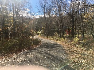 Pawling Residential Lots & Land For Sale: 56 Route 292