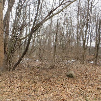 East Fishkill Residential Lots & Land For Sale: 6 Warren Dr