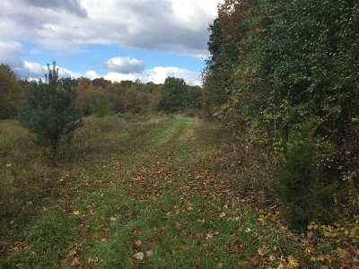Red Hook Residential Lots & Land For Sale: Norton Road Lot 3